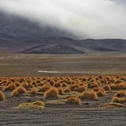 Uyuni dessert, Bolivia